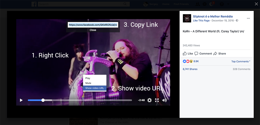 Online Facebook Video Downloader